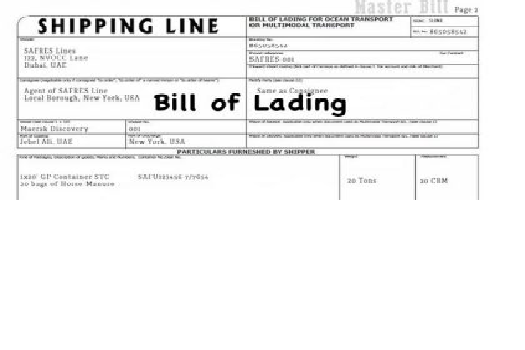 SURRENDERED BILL OF LADING VÀ SEAWAY BILL OF LADING